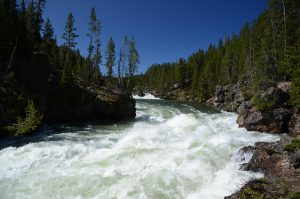 River Yellowstone Wyoming